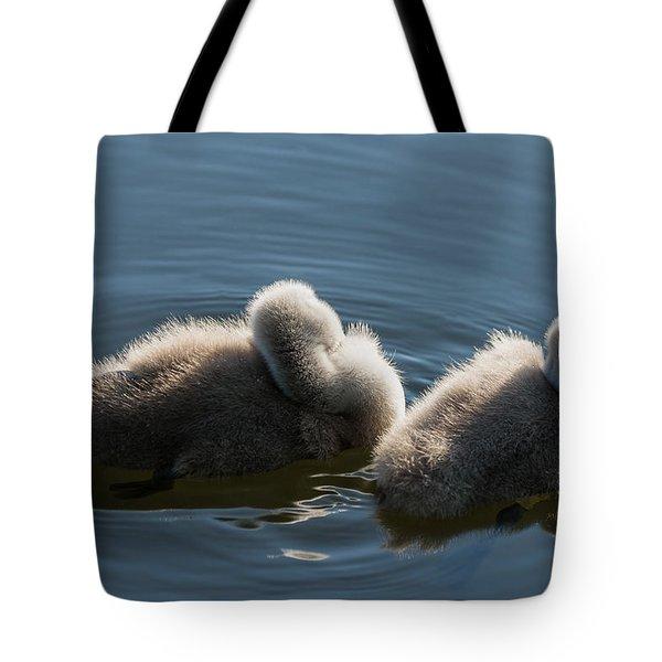 Swan Siesta Tote Bag by Michael Mogensen