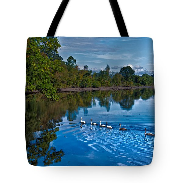 Swanny River Tote Bag by Karol Livote