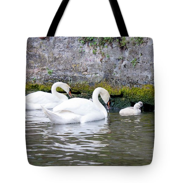 Swans And Cygnets In Brugge Canal Belgium Tote Bag