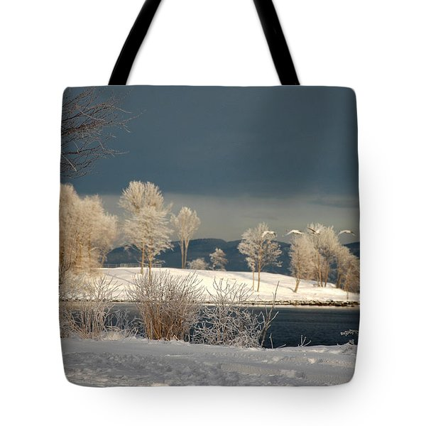Tote Bag featuring the photograph Swans On A Frosty Day by Randi Grace Nilsberg