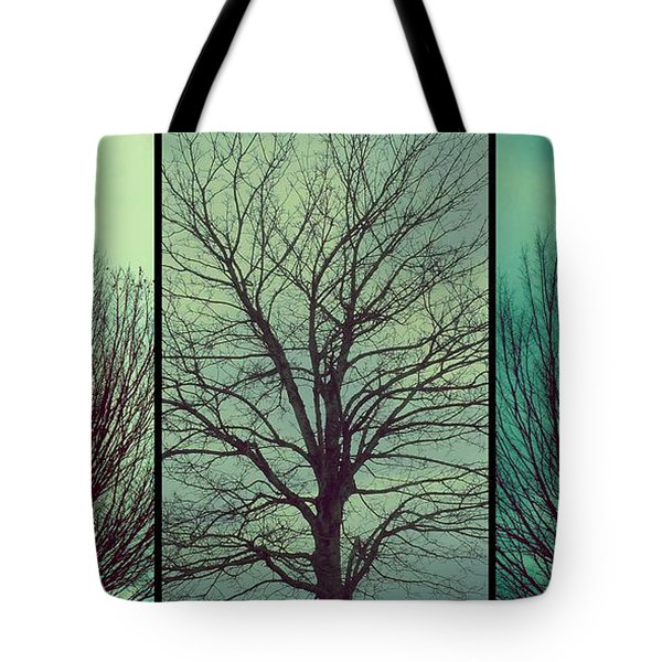 Tote Bag featuring the photograph Sweep The Sky by Patricia Strand