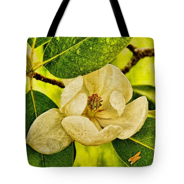 Sweet Bay Magnolia After The Rain Tote Bag by Lois Bryan