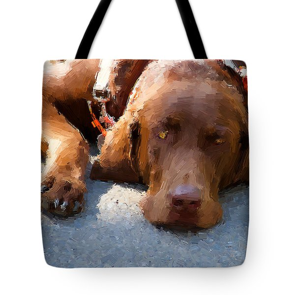 Sweet Chocolate Tote Bag by Alice Gipson