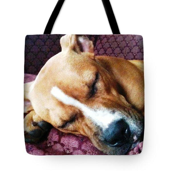 Sweet Dreams Tote Bag by Debbie Finley