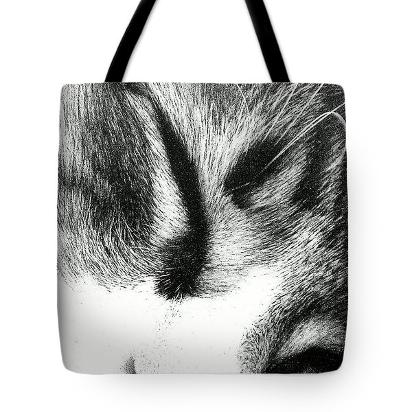 Tote Bag featuring the photograph Sweet Dreams by Jacqueline McReynolds