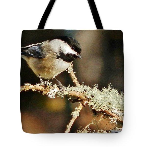 Sweet Little Chickadee Tote Bag by VLee Watson