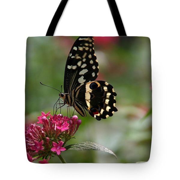 Tote Bag featuring the photograph Sweet Nectar by Denyse Duhaime
