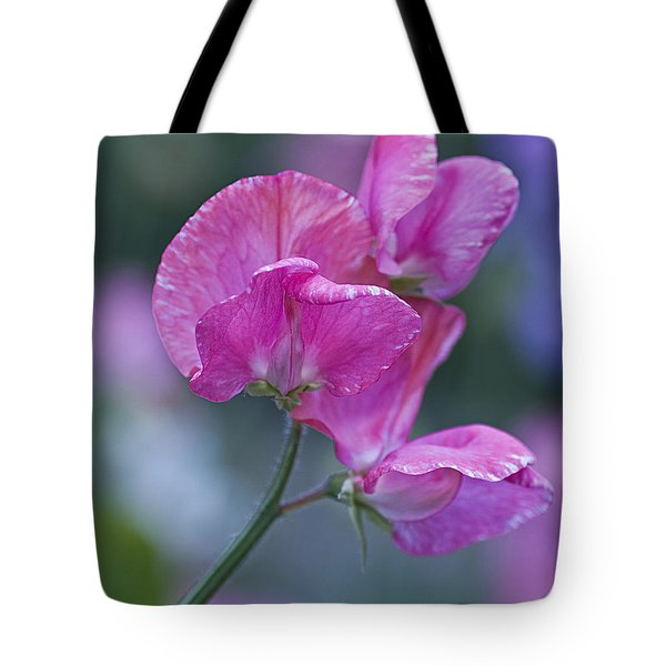 Sweet Pea In Pink Tote Bag