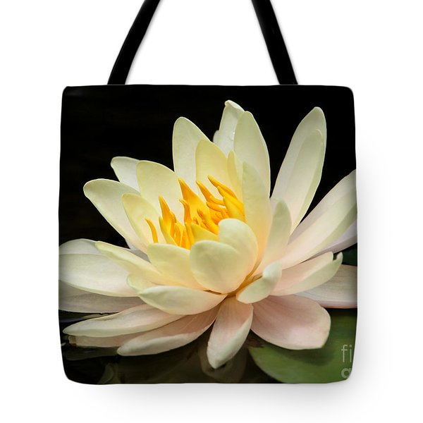 Sweet Peach Water Lily Tote Bag by Sabrina L Ryan