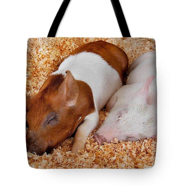 Sweet Piglets Nap Art Prints Tote Bag