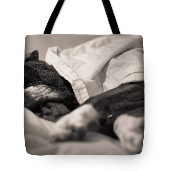 Sweet Sleeping Boxer Tote Bag by Stephanie McDowell