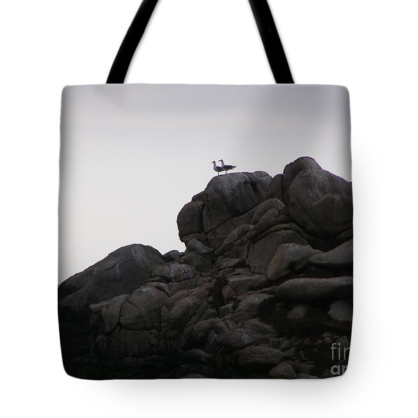 Sweethearts Tote Bag by Bev Conover