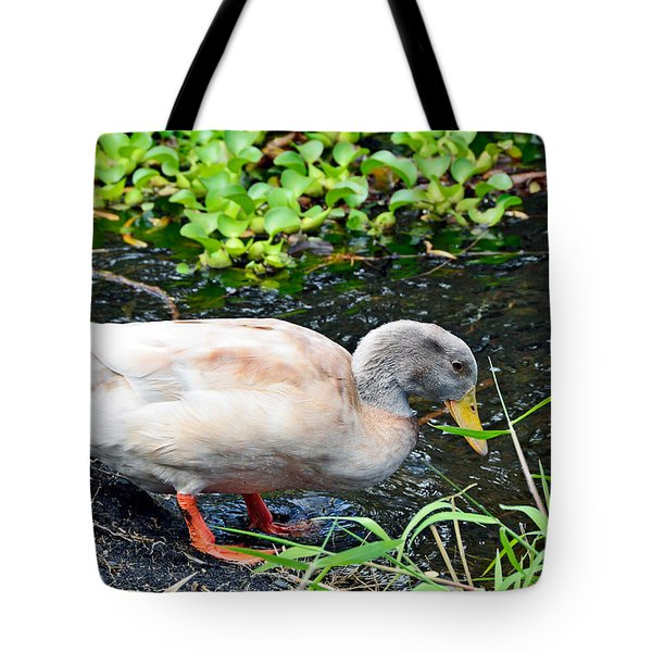 Swim Time Tote Bag
