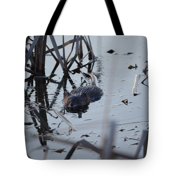 Tote Bag featuring the photograph Swimming by James Petersen