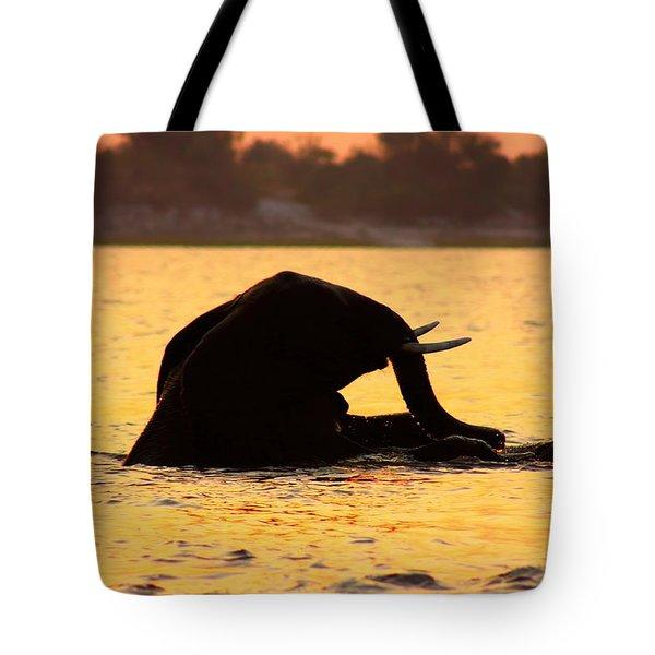 Tote Bag featuring the photograph Swimming Kalahari Elephants by Amanda Stadther