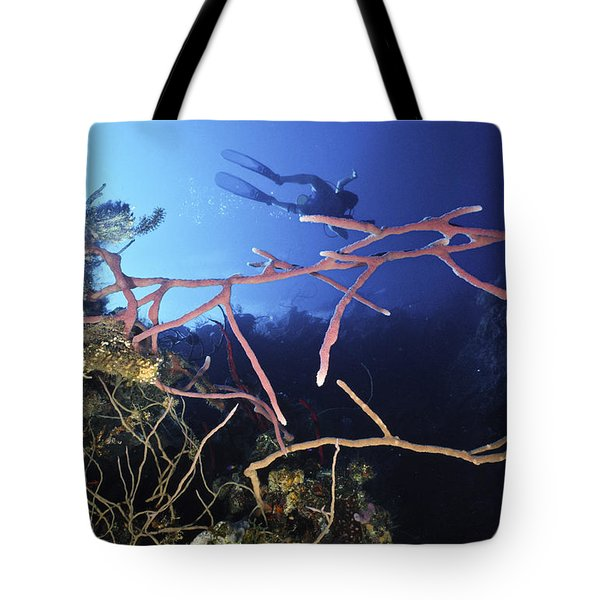 Swimming Over The Edge Tote Bag