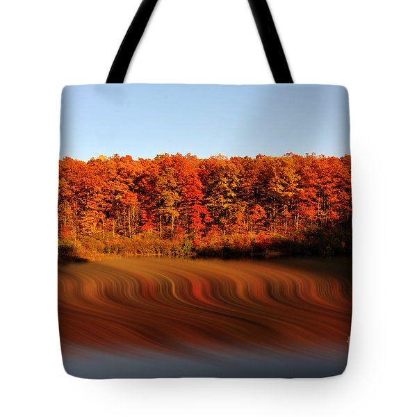 Swirling Reflections With Fall Colors Tote Bag by Dan Friend