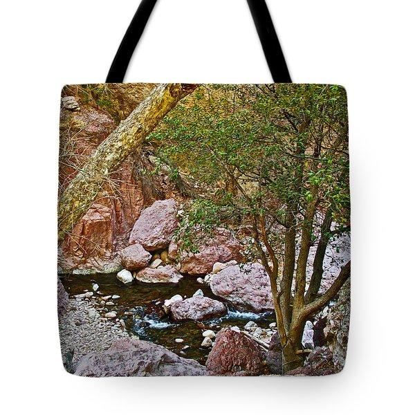 Sycamore And Cottonwood In Whitewater Catwalk National Recreation Trail Near Glenwood-new Mexico  Tote Bag by Ruth Hager