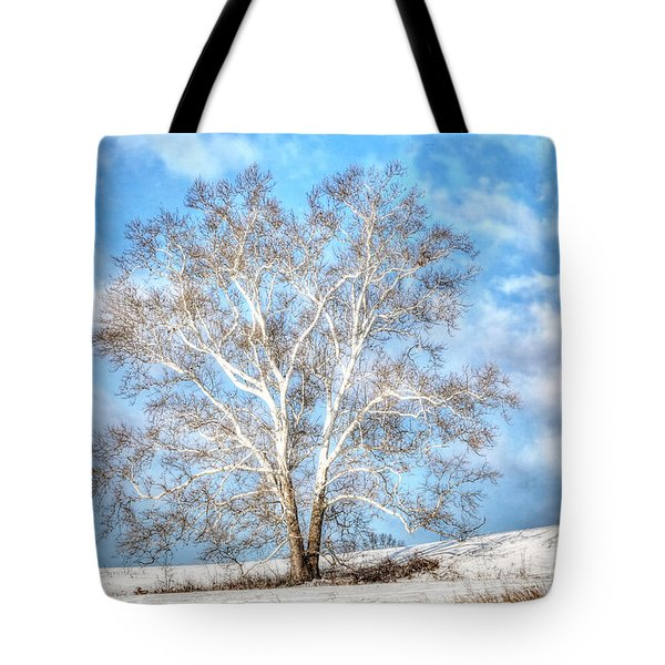 Sycamore Winter Tote Bag
