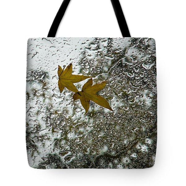 Symbols Of Autumn  Tote Bag