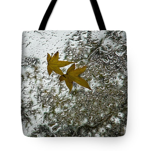 Symbols Of Autumn  Tote Bag