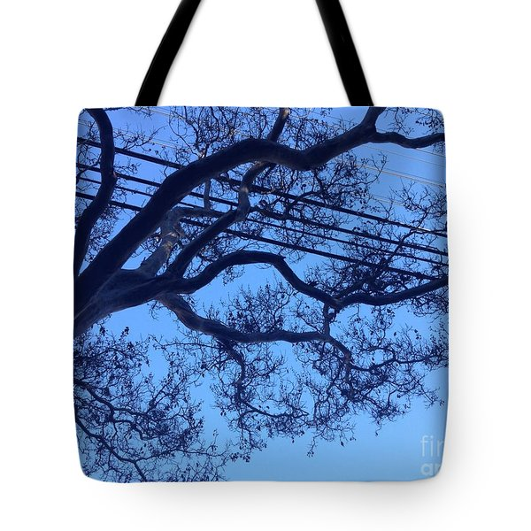 Symphony Tote Bag by Nora Boghossian