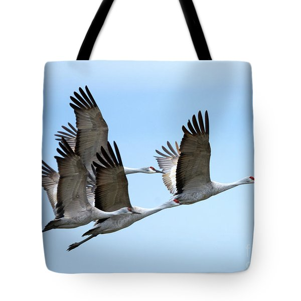 Synchronized Tote Bag