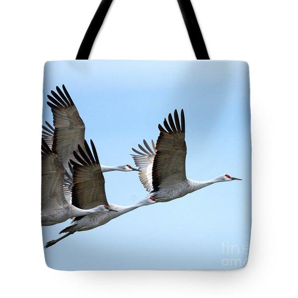 Synchronized Tote Bag