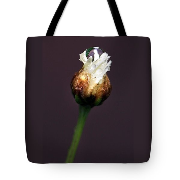 Tote Bag featuring the photograph Synergy I by Marion Cullen