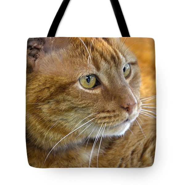 Tabby Cat Portrait Tote Bag by Sandi OReilly