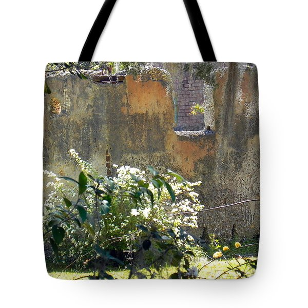 Tabby On The Old Point Tote Bag by Patricia Greer