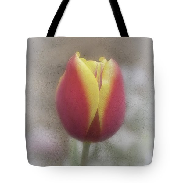 Tote Bag featuring the photograph Tabitha by Elaine Teague