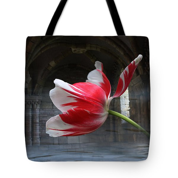Tabula Rasa Tote Bag by Yvonne Wright