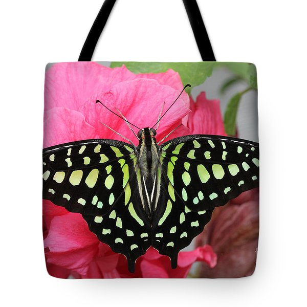 Tote Bag featuring the photograph Tailed Jay Butterfly #6 by Judy Whitton