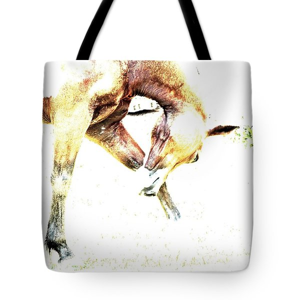 Take A Bow Tote Bag by Annie Zeno