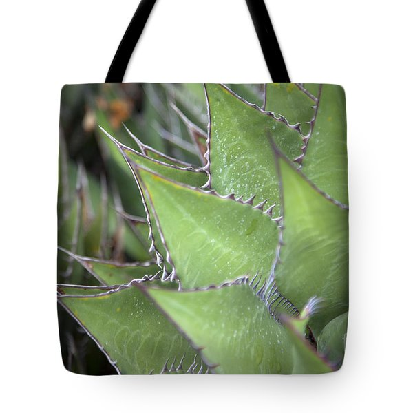 Take A Seat Tote Bag by Amanda Barcon