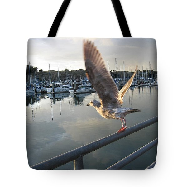 Tote Bag featuring the drawing Take Flight by Dianne Levy