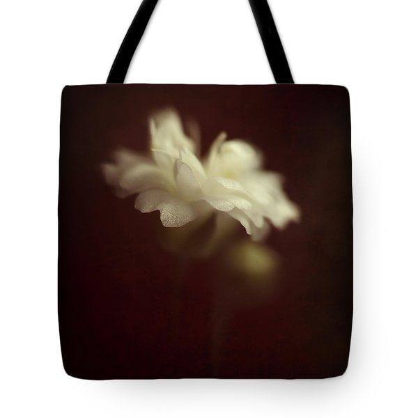 Take Me To The Secret Place Where All Your Dreams Come True Tote Bag