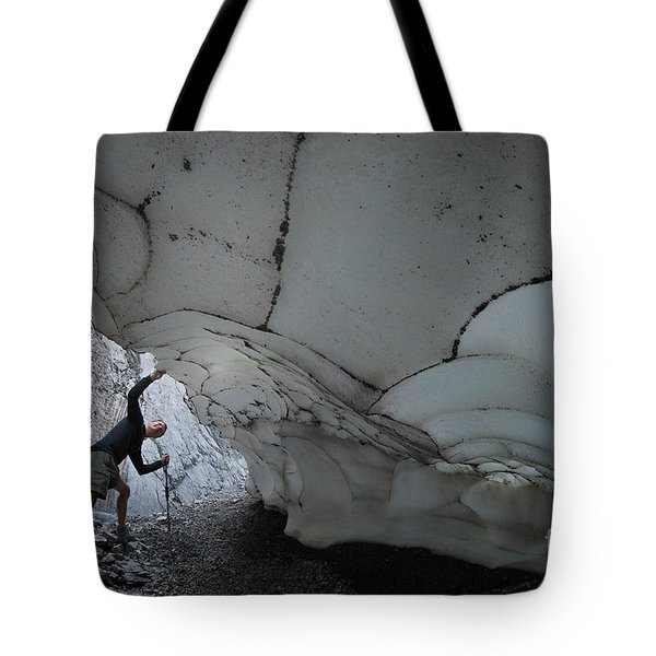 Taking A Look Tote Bag by Bob Christopher