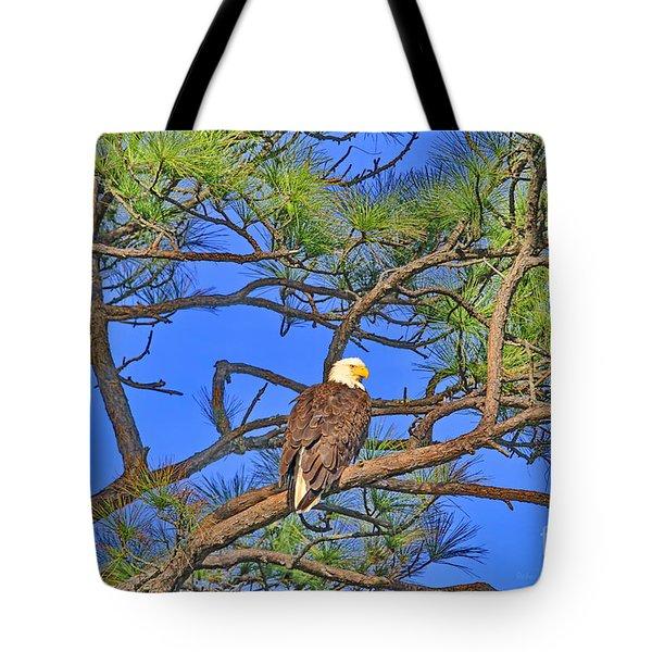 Taking A Nest Break Tote Bag by Deborah Benoit