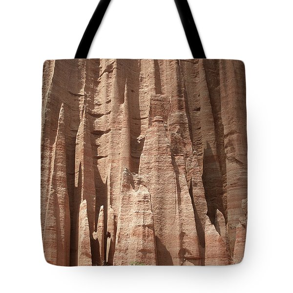 Tote Bag featuring the photograph Talampaya Gorge Argentina by Rudi Prott