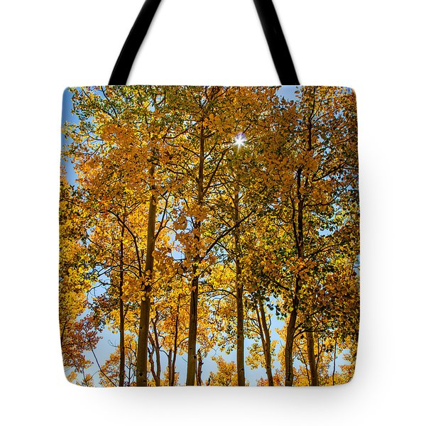 Tall Aspen With Sunstar Tote Bag
