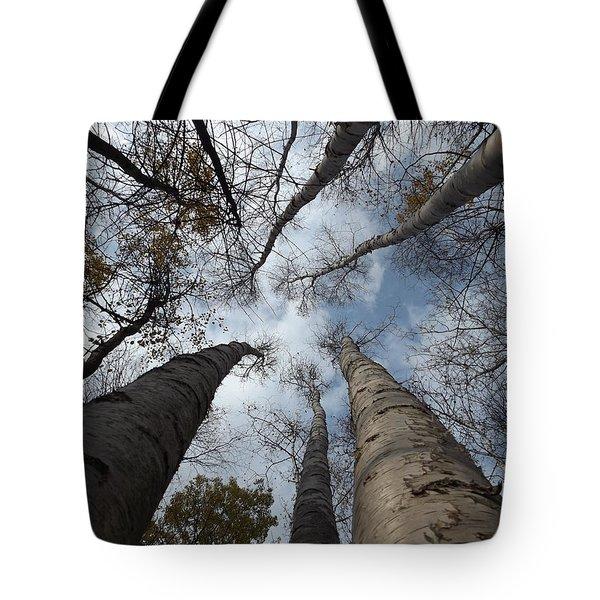 Tall Birch Circle Tote Bag