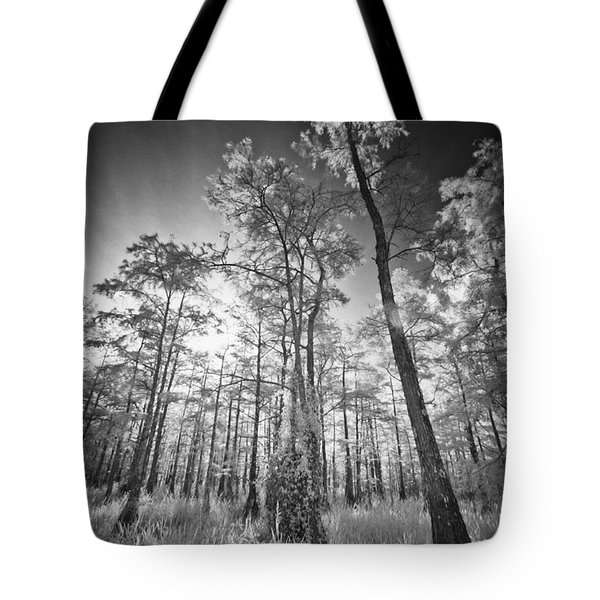 Tall Cypress Trees Tote Bag