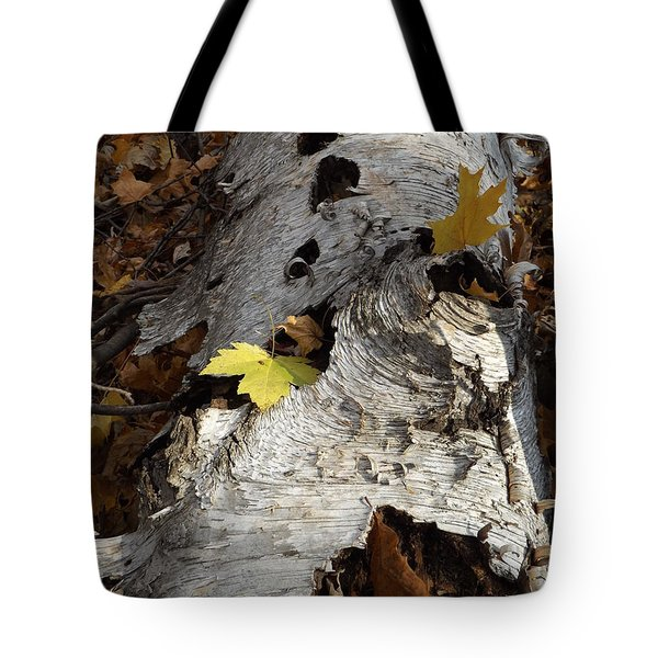 Tall Fallen Birch With Leaves Tote Bag