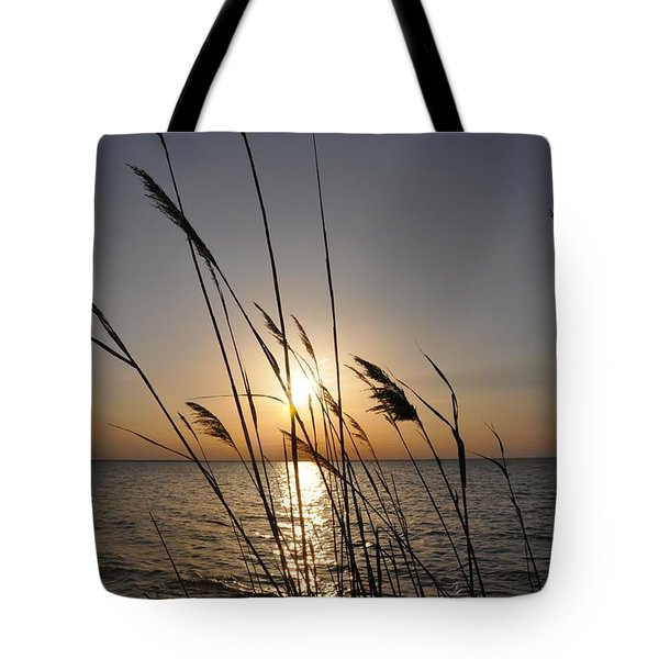 Tall Grass Sunset Tote Bag