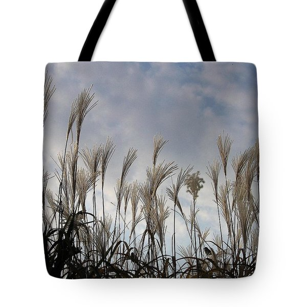 Tall Grasses And Blue Skies Tote Bag by Dora Sofia Caputo Photographic Art and Design