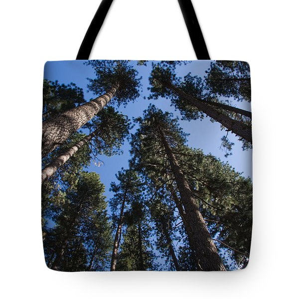 Talls Trees Yosemite National Park Tote Bag