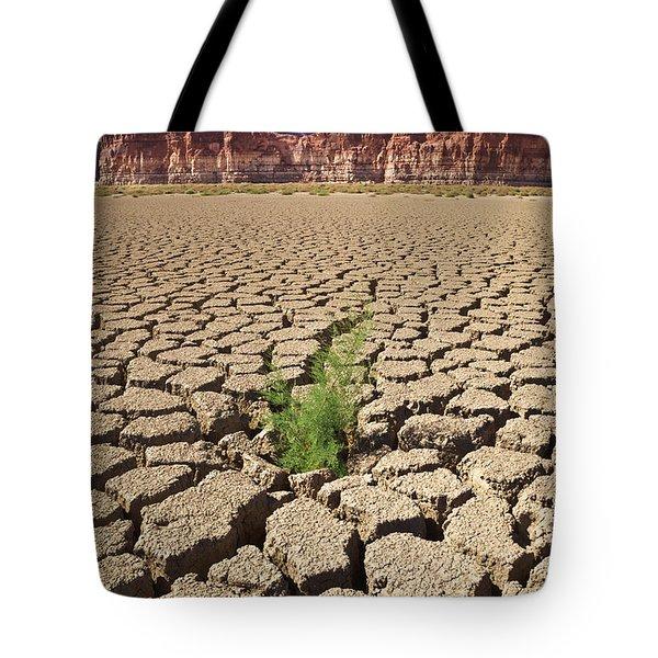 Tamarisk In Dry Colorado River Tote Bag