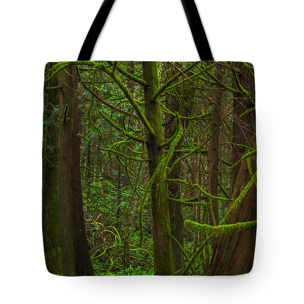 Tote Bag featuring the photograph Tangled Forest by Jacqui Boonstra